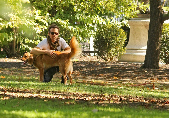 Awesome Celebrity Pet Dads Who Love Their Fur Babies