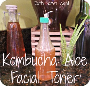Homemade Kombucha Aloe Facial Toner