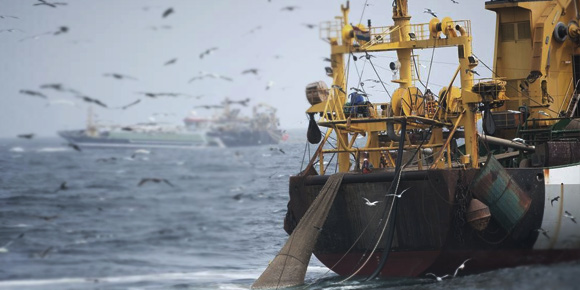 5 reasons you should be super worried about super trawlers