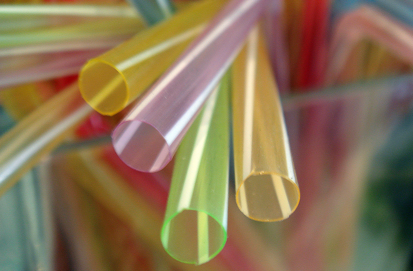 Dare to Stand Out From the Crowd! How to Start Ditching Single-Use Items
