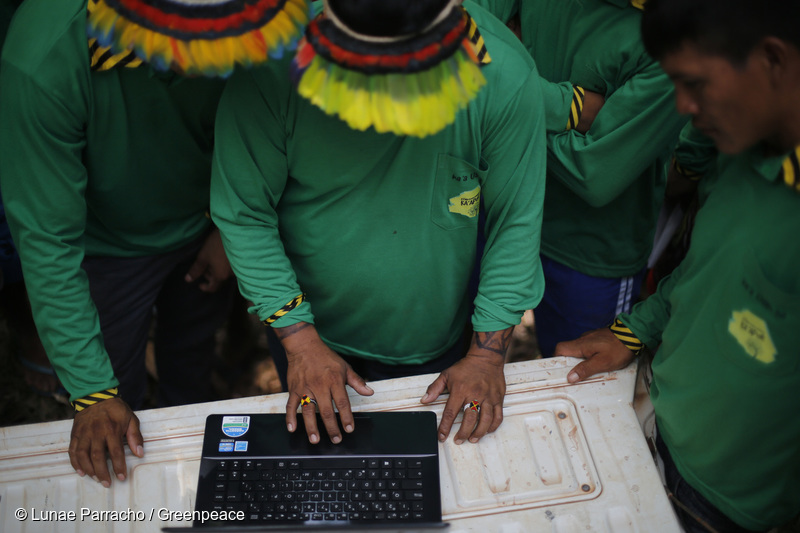 Amazon Indigenous Community Is Taking Back Their Home From Illegal Loggers Thanks to Technology