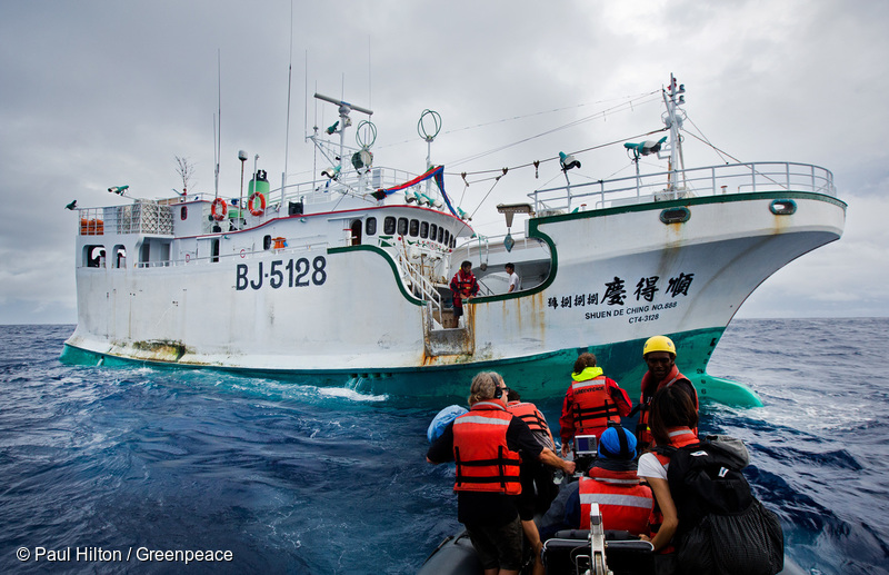 Greenpeace Ship Busts Illegal Tuna Fishing Operation on the Pacific High Sea