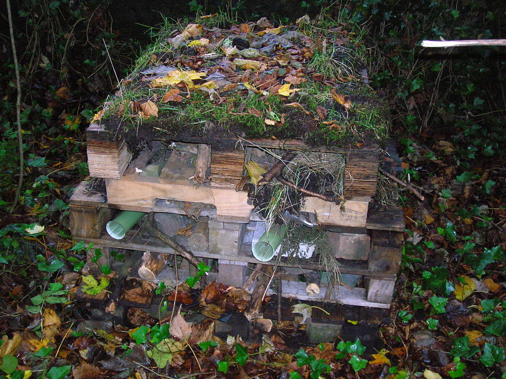 1024px-Bug_Hotel_Spiers