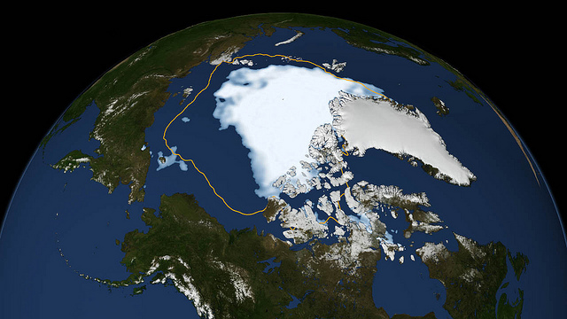 Melting Sea Ice Is Mixing Up Whales
