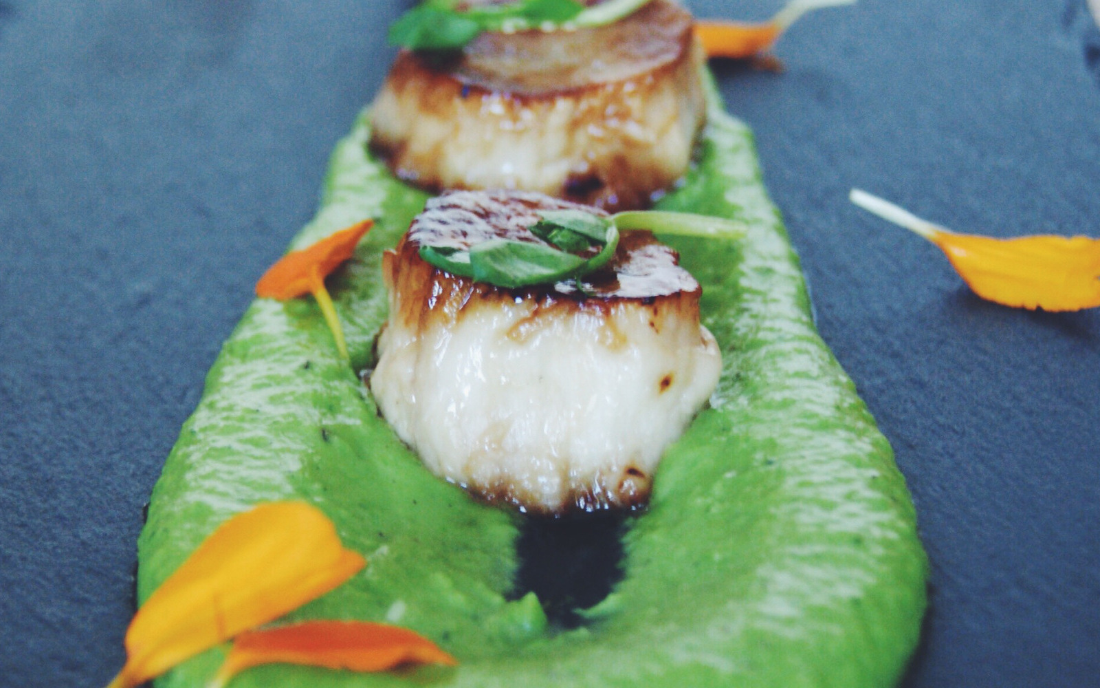seared mushroom scallops with mint pea puree