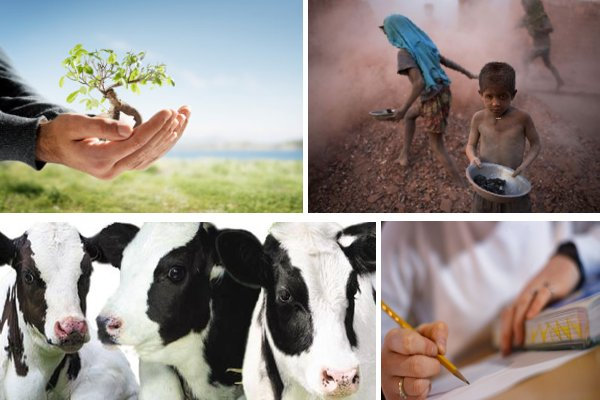humane education, people, animals and the planet