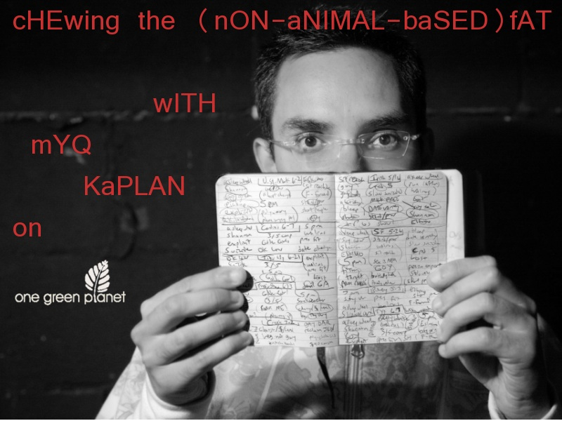 Chewing the (Non-Animal-Based) Fat, With Comedian Myq Kaplan...Deaturing Gaby Dunn