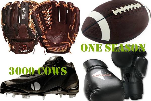 sports equipment vegan 052411