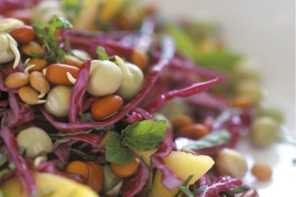 raw vegan food travel tips