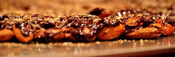Cacao Cashew Bark