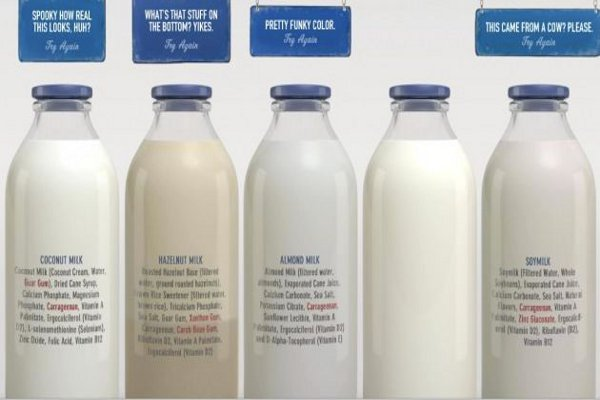 Look Who's Afraid! The Dairy Industry Launches Ad Campaign Dissing Plant-based Milks
