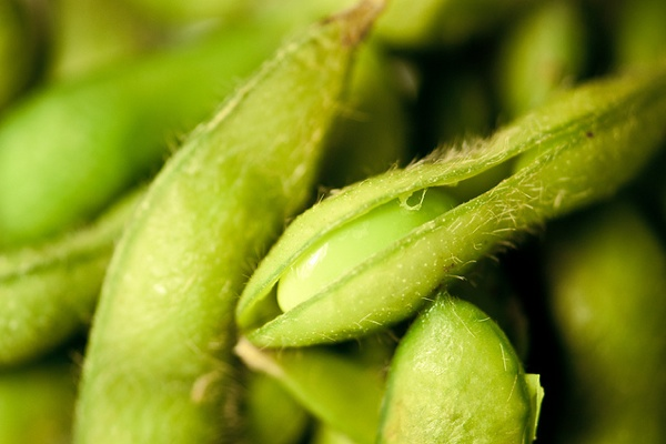 New Research on Cholesterol-Lowering Benefits of Soy