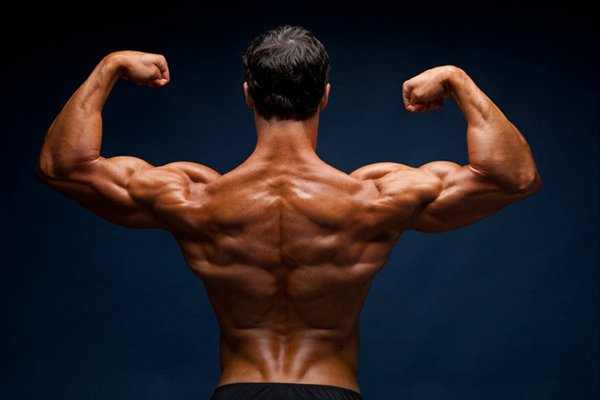 Protein in a Plant-based Diet: A Vegan Bodybuilder's Perspective