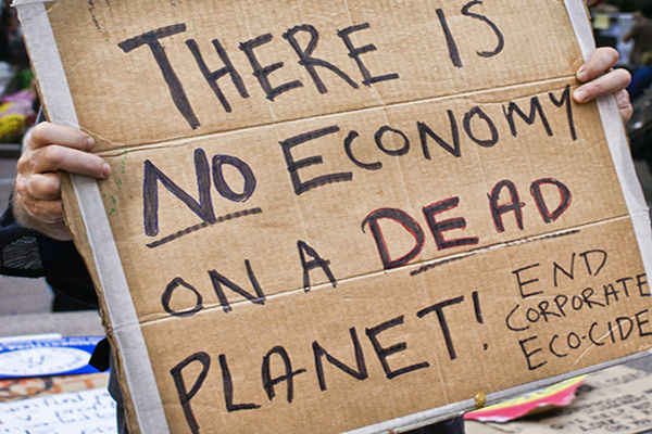What is Ecocide and What Can You Do About it?