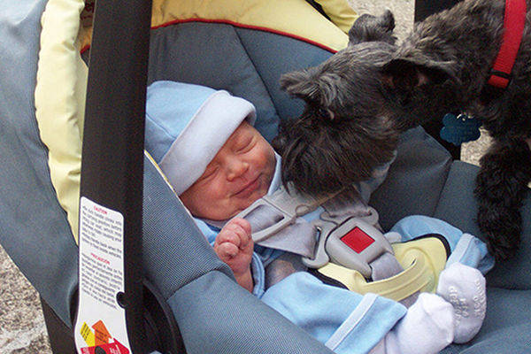 New Study Reveals Dogs and Cats Make Babies Healthier