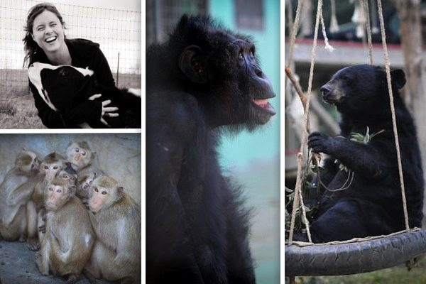 Featured Green Monster: Jo-Anne McArthur, Animal Rights Photographer