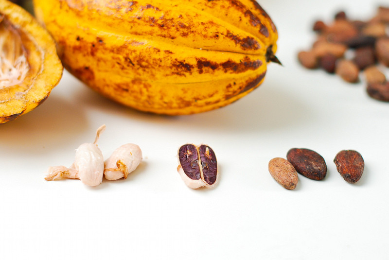 Cacao: Health Benefits, Tips and Product Picks!