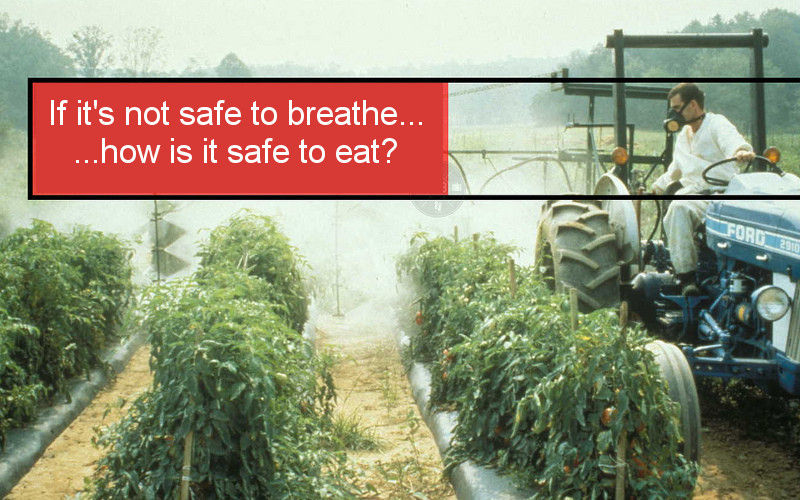 Understanding the Effects of Pesticides on Your Health