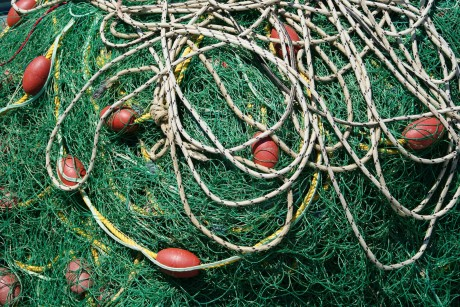 10 Alarming Facts About Overfishing