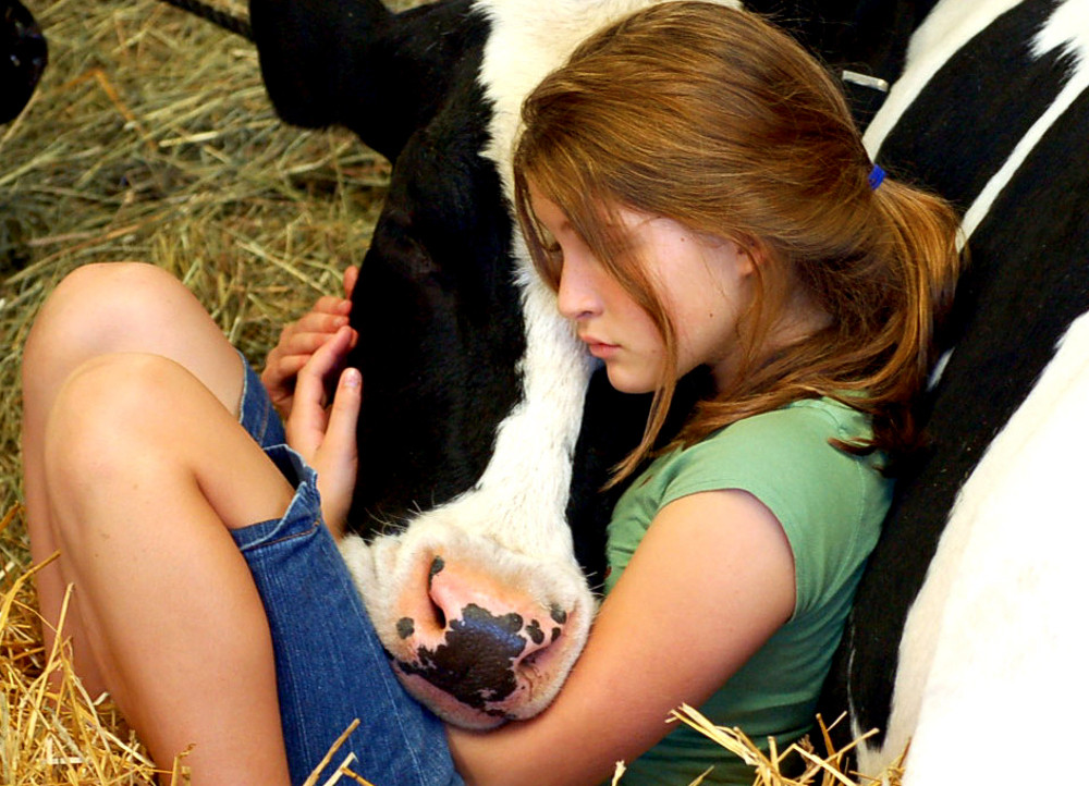10 Big Wins for Farm Animals in the Past 10 Years