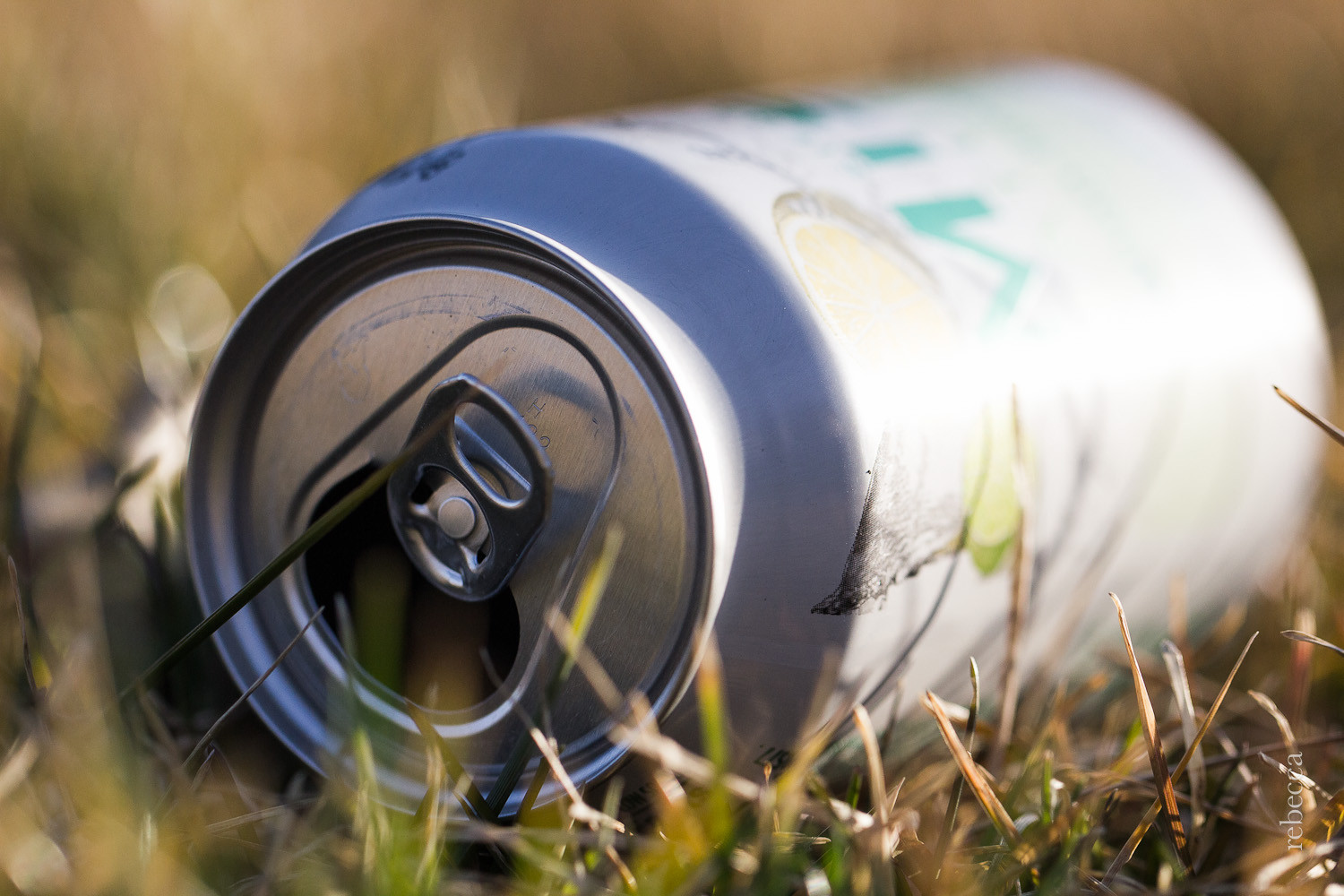 How to Kick that Soda Habit With Healthy Natural Alternatives