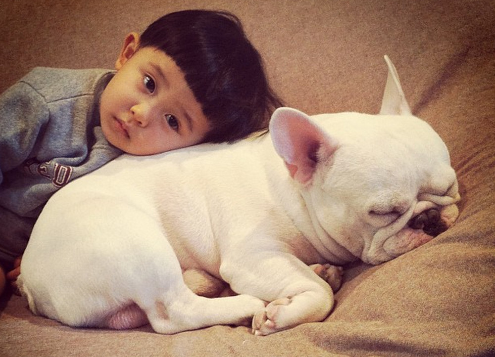 The Bond Between This Boy and His Adorable French Bulldog Will Melt Your Heart