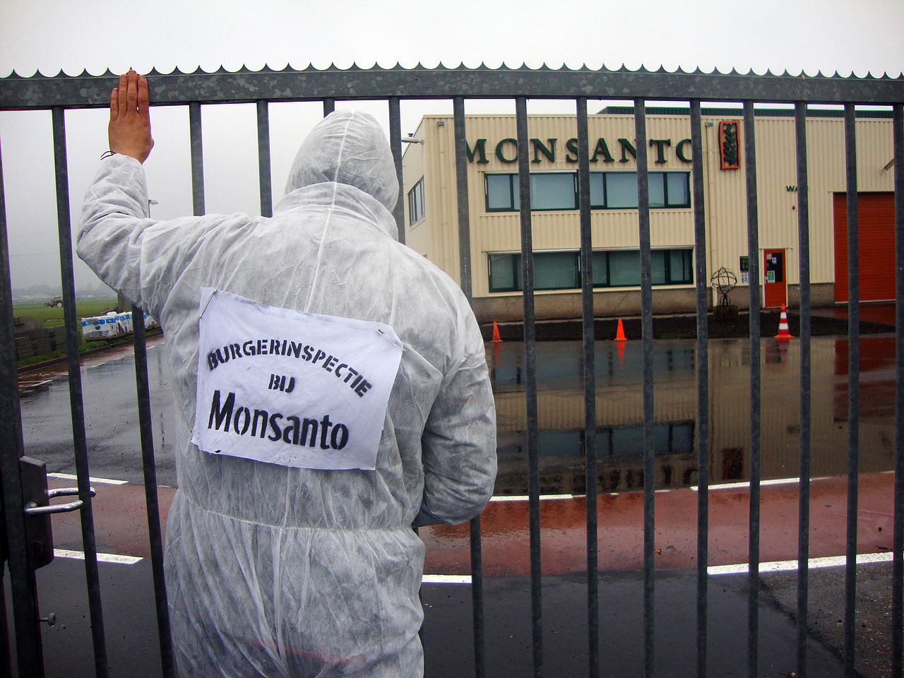 Has Monsanto Gone Mad?
