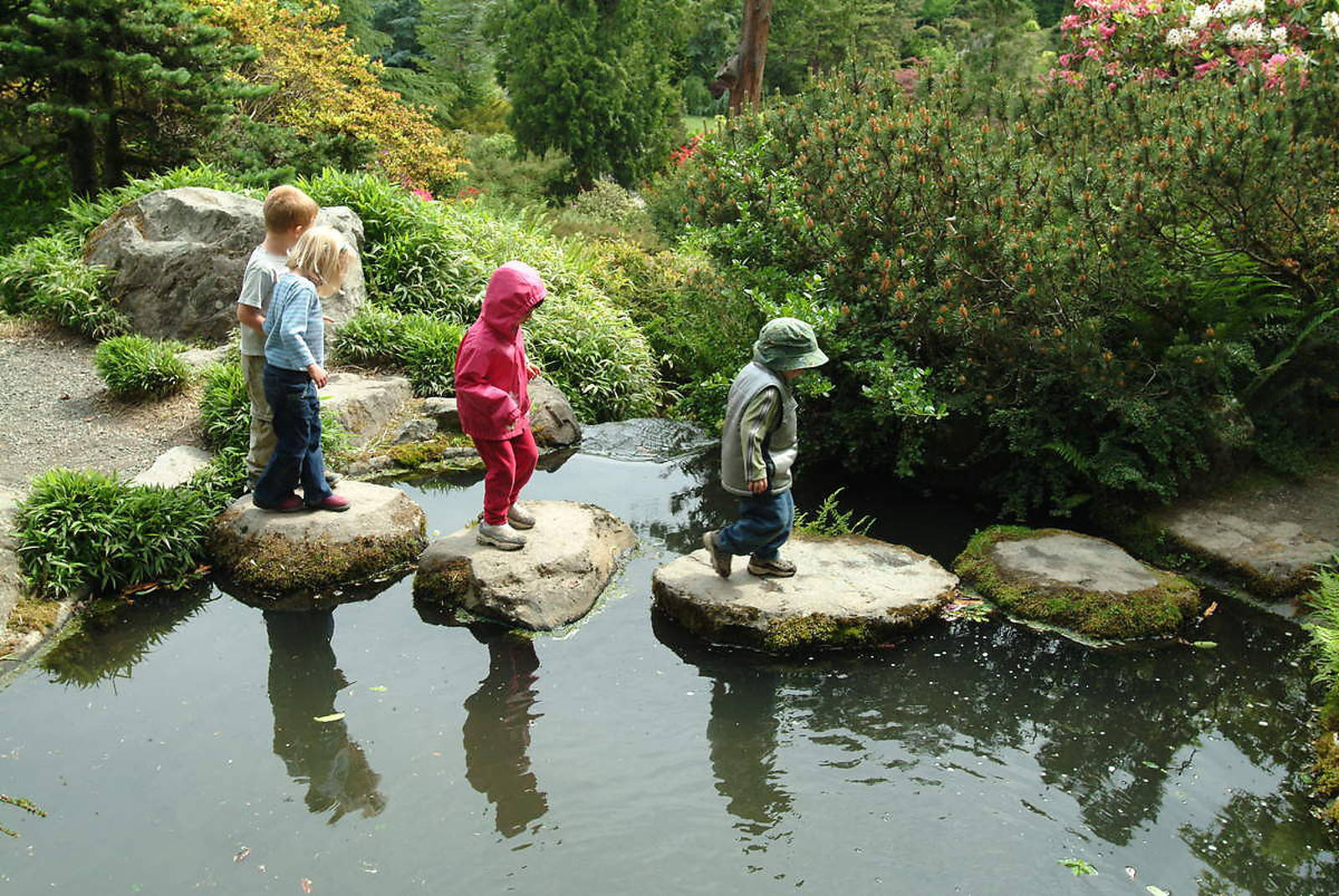 10 Fun and Educational Activities to Do with Kids During National Wildlife Week