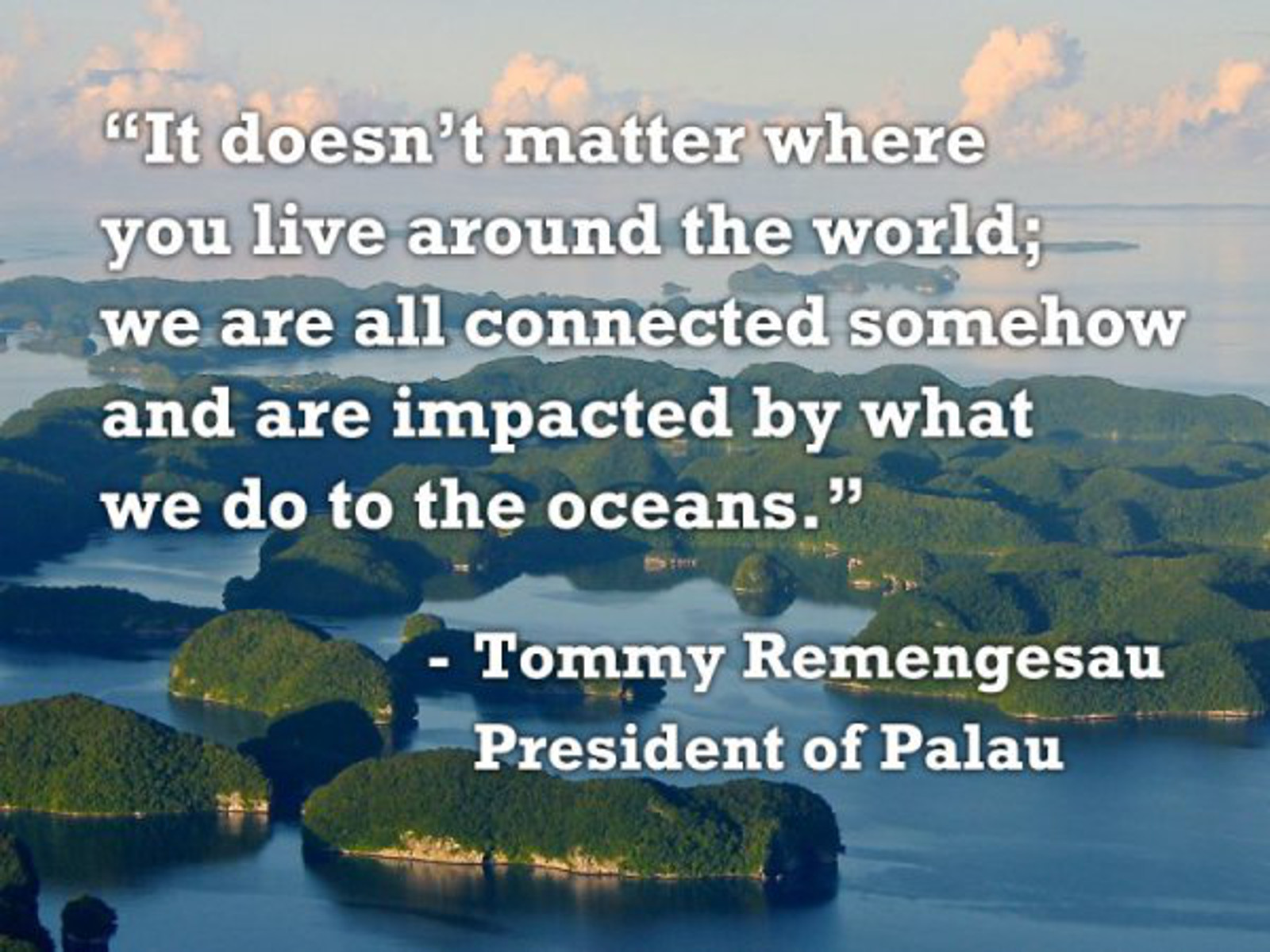 How Will Palau's Ban on Commercial Fishing Help Save the Planet (and Animals!)