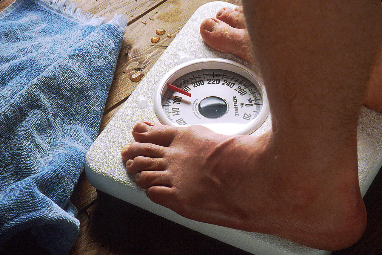 The Real Deal on Carbs and Fats in Your Quest to Lose or Maintain Weight