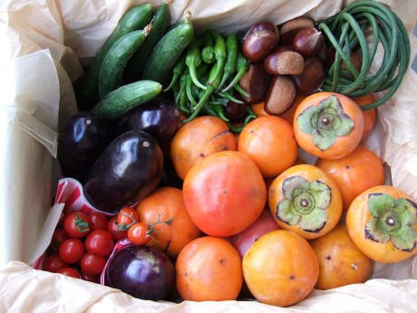 Can You Get Sufficient Protein from Only Eating Raw Fruits and Vegetables?