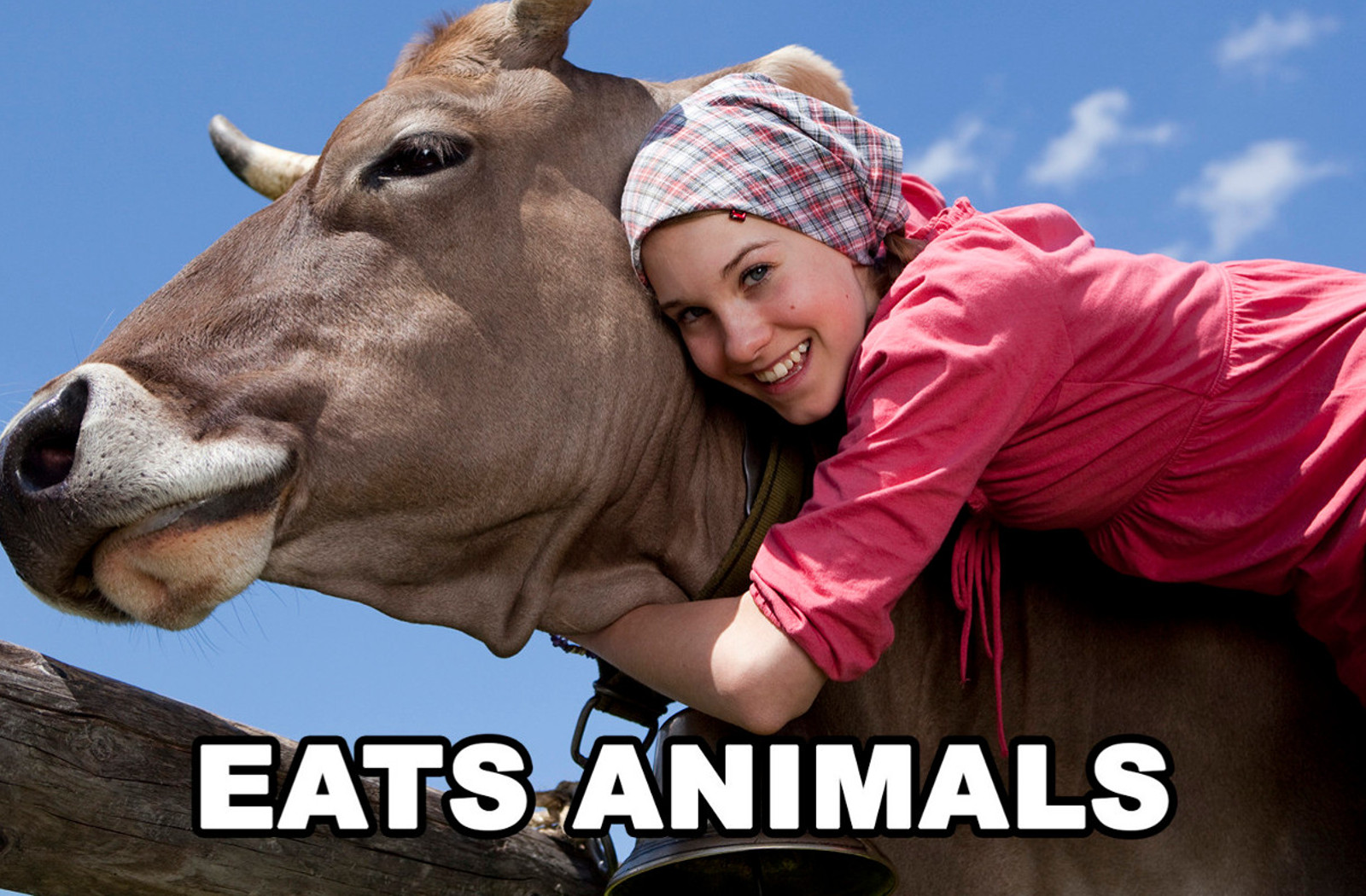 5 Crazy Examples of Animal Lovers who are Seriously Confused