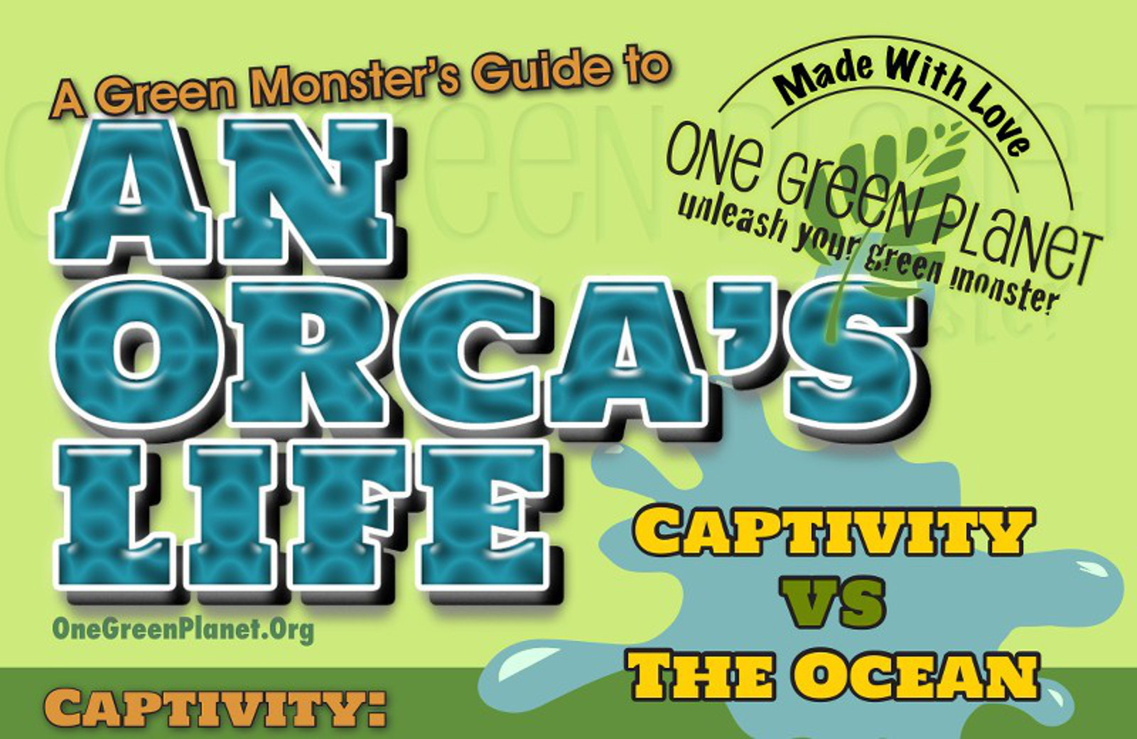 An Orca's Life in Captivity vs. the Ocean [INFOGRAPHIC]