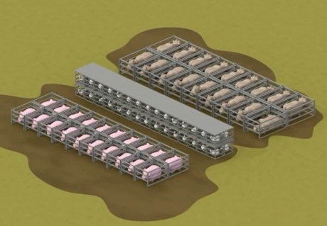 The Brutal Basics of Factory Farming Without the Gore All in One Video