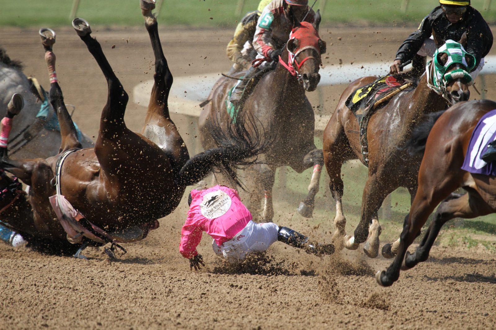 5 Myths the Horseracing Industry Spreads