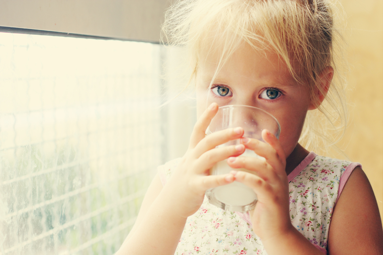 10 Reasons to Never Feed Your Kids Dairy Again
