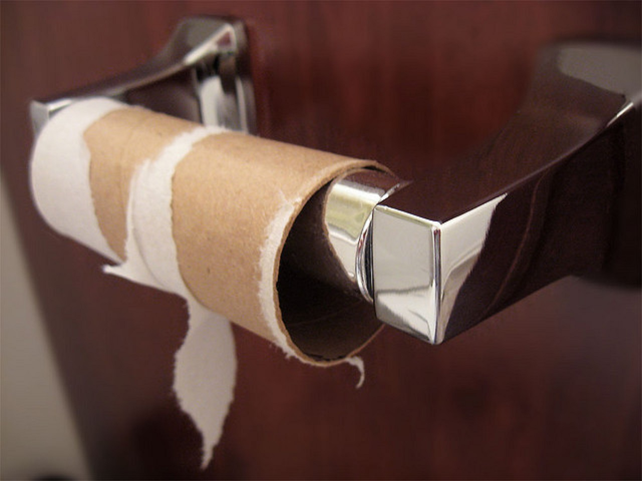 10 Unconventional Ways To Use Old Paper Towel And Toilet Paper Rolls Around The House One Green Planet