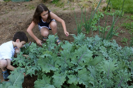 5 Fun and Educational Things To Do With Kids In The Garden