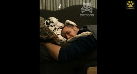 Watch This Dog Comfort His Human Dad in the Sweetest Way