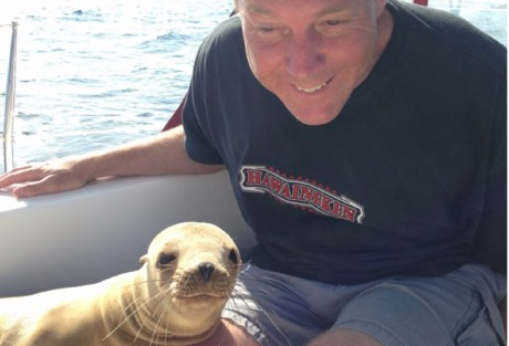 This Sea Lion Jumped Inside A Boat -- and What He Did to The Passenger Will AMAZE You!