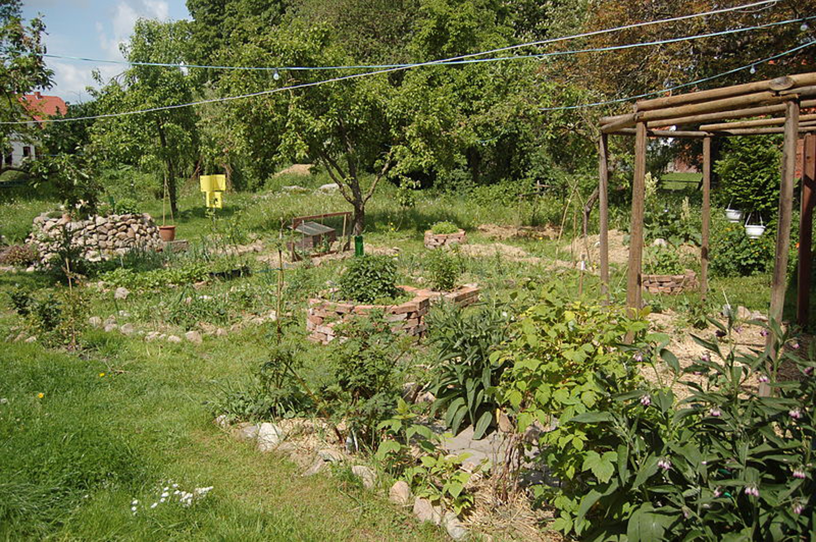 5 No-Till Garden Beds Loved by Permaculturalists the World Over