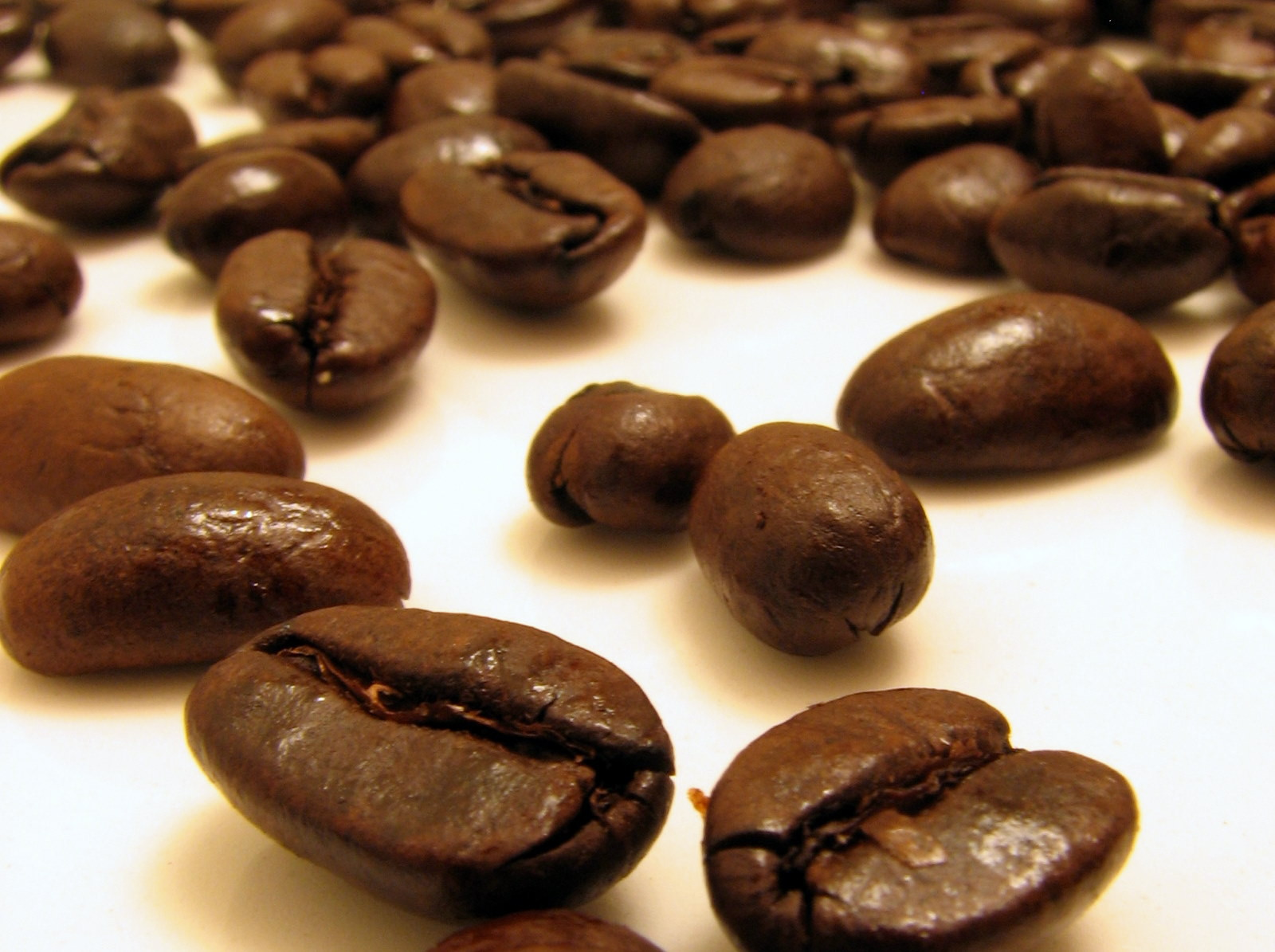 5 Reasons to You Should ONLY Buy Organic, Fair-Trade Coffee