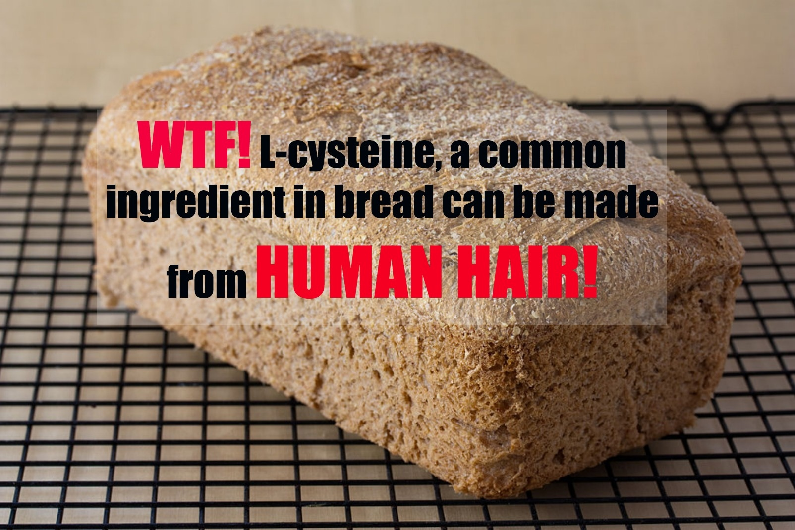 YIKES! Are You Unknowingly Eating Hair or Feathers In Your Bread?