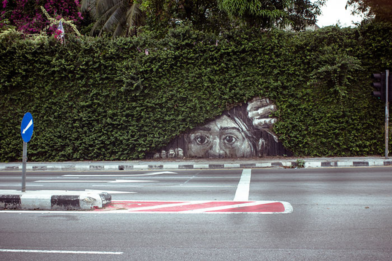 These Awesome Graffiti Artists Are Shaking Up the way We Think About Our Relationship With Nature