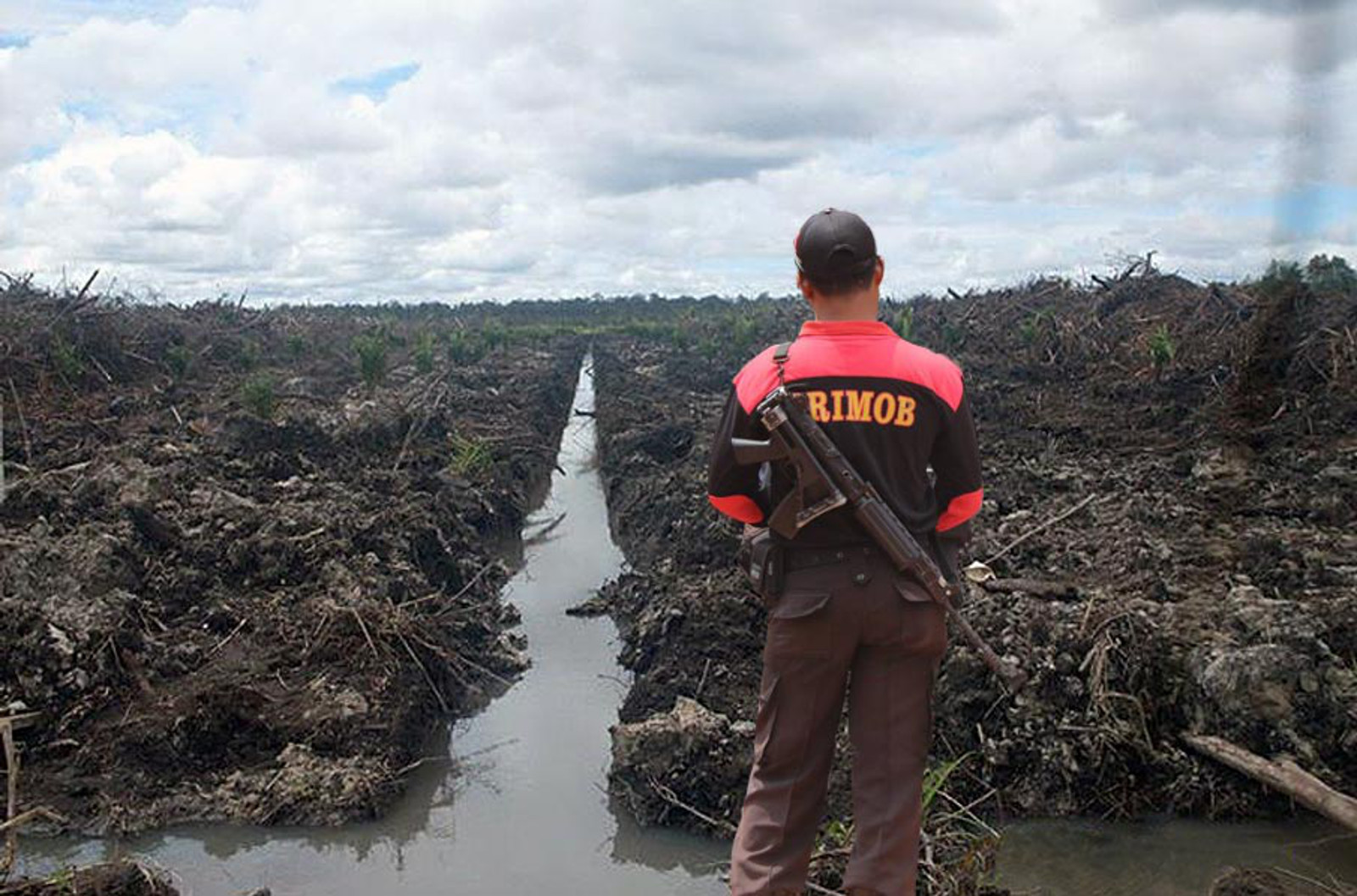 Human Rights Abuse: The Palm Oil Industry's Best Hidden Secret