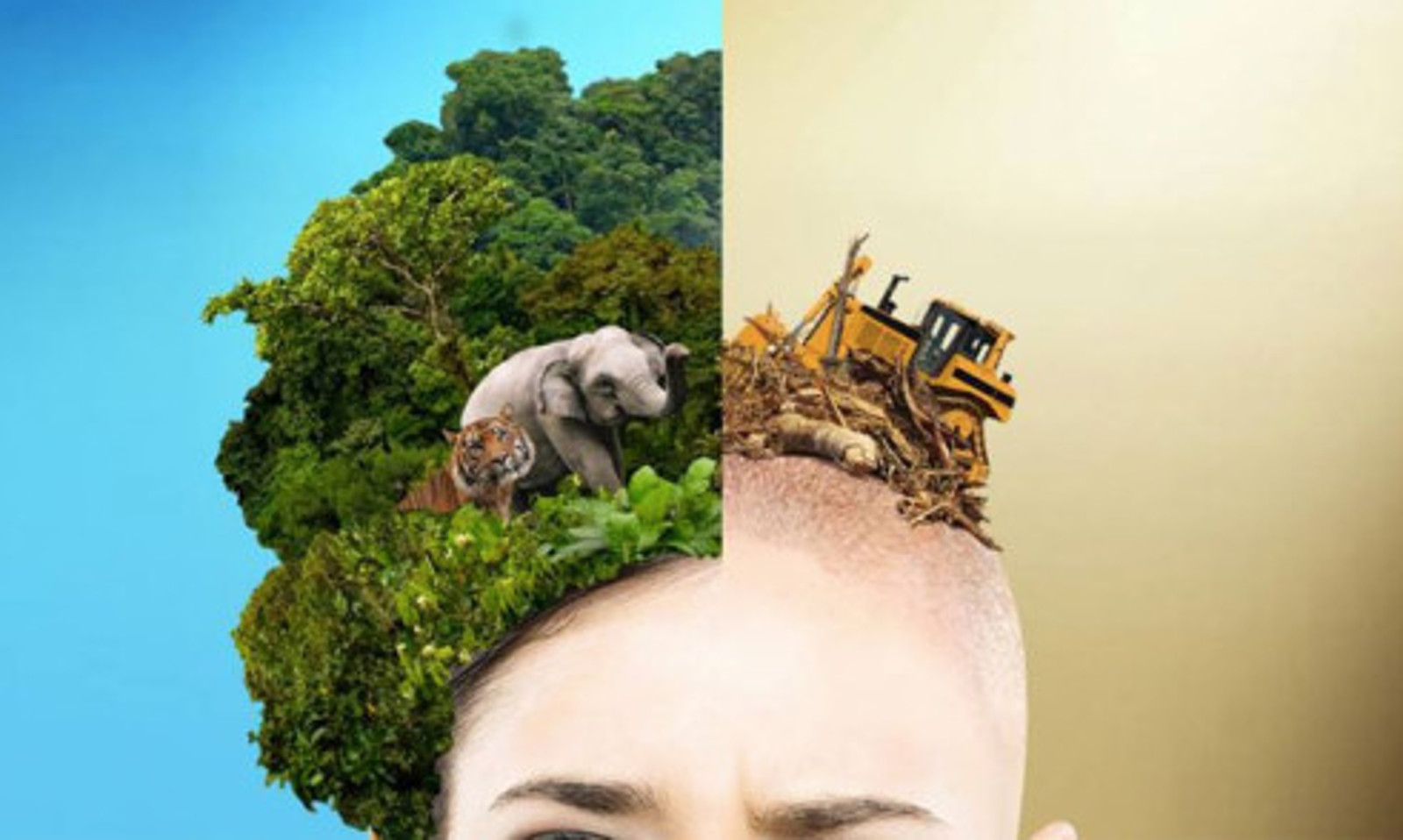 10 Genius Campaigns That Show You the REAL Cost of Your Consumer Goods