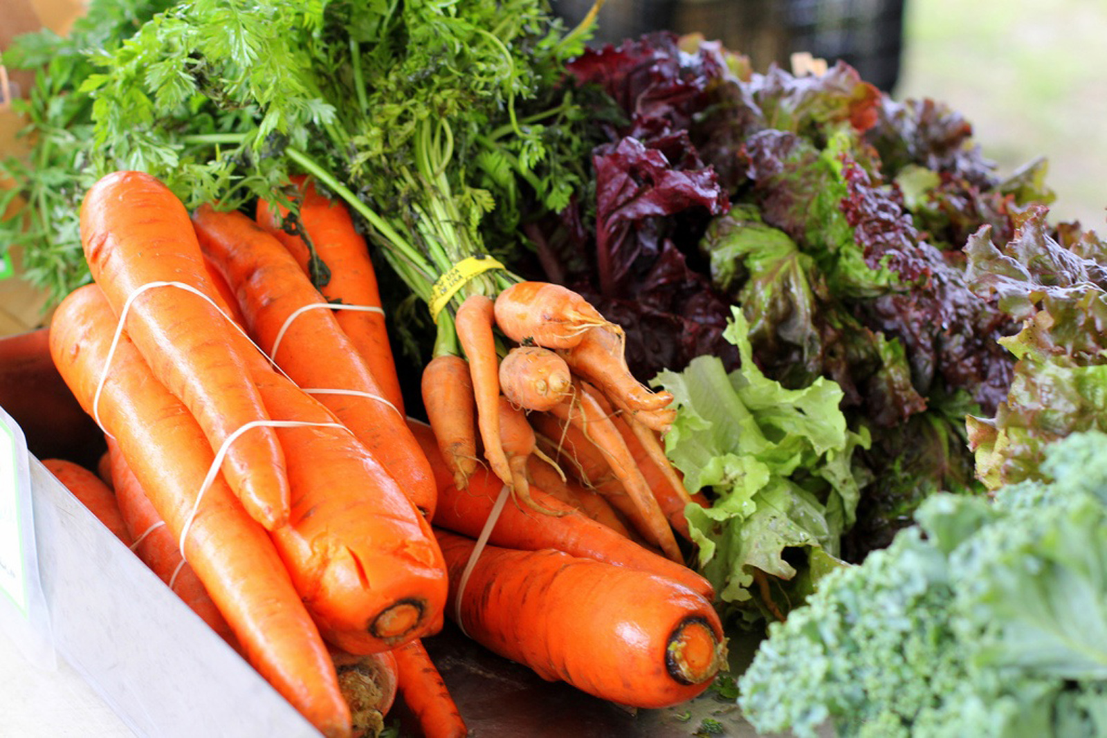 How Opting for a Food Delivery Program Might Just Save You More Money On Groceries