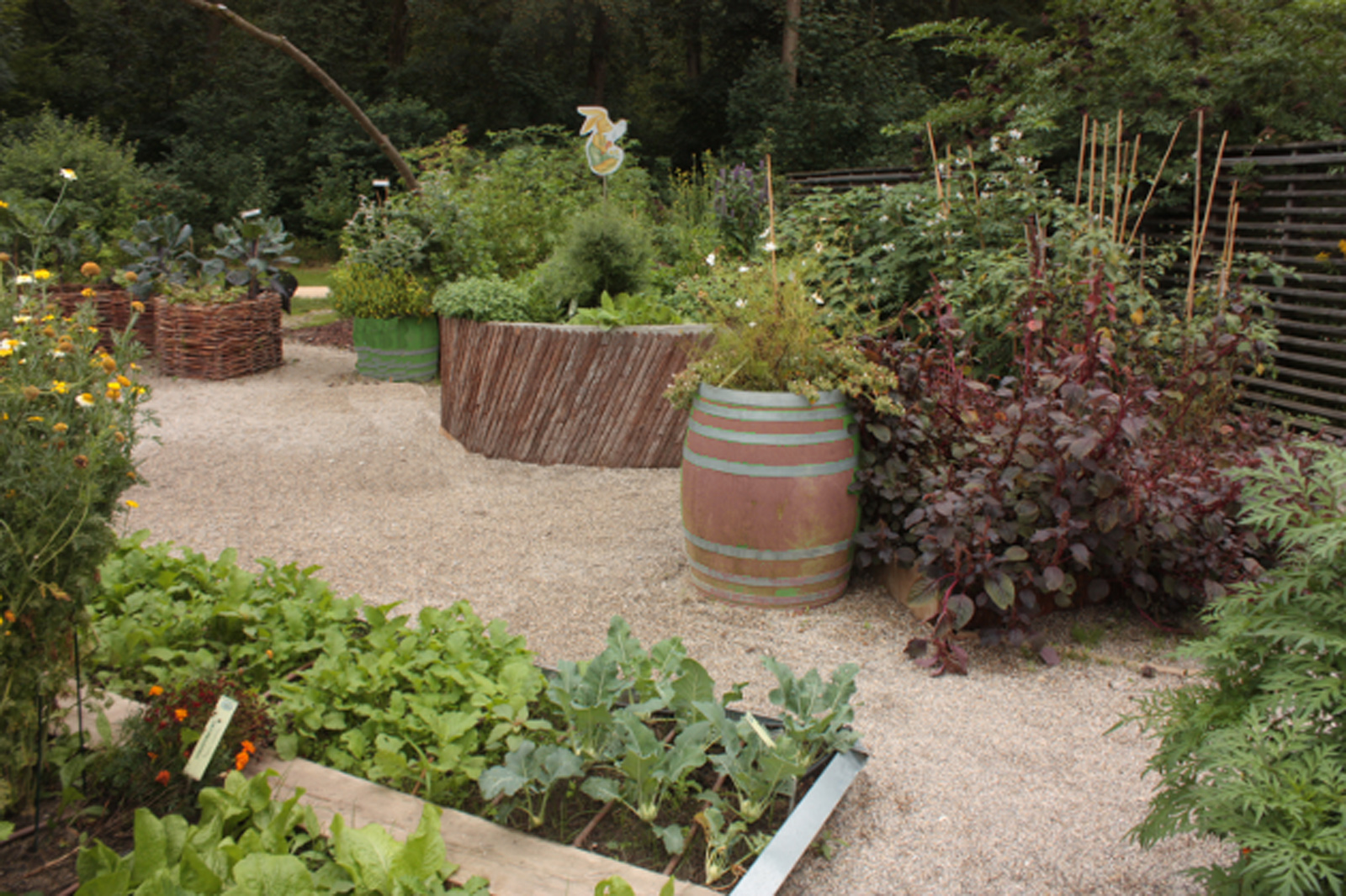 How to Make Your Patio (or Balcony) an Abundant Source of Food