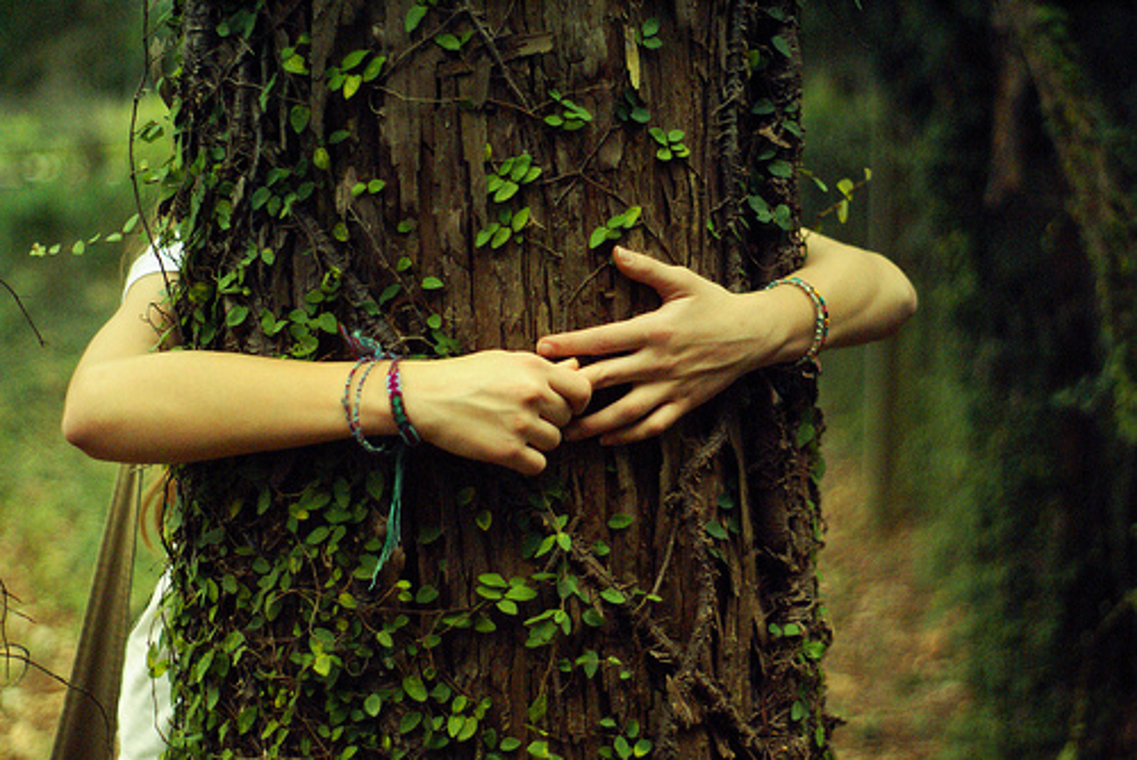 6 Ridiculous Questions People Ask When You Say You're an Environmentalist
