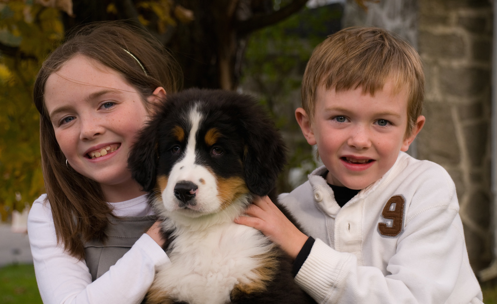 5 Tips for Training Your Pooch to Be Around Kids